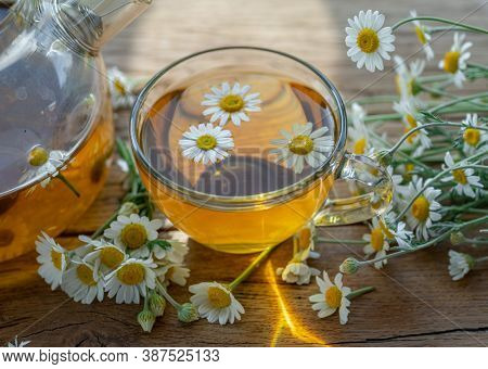 Herbal chamomile tea and chamomile flowers on wooden table. Top view.