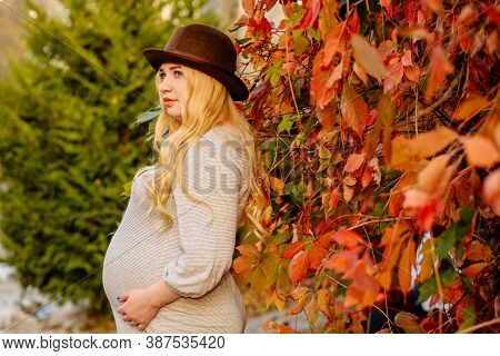 Beautiful Blond Pregnant Woman With Long Hair In Hat, Tight Dress, Red And Yellow Leaves In Sunlight