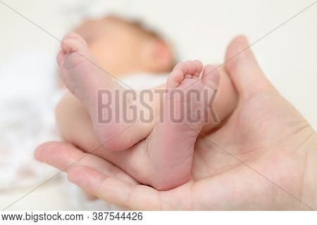 Baby feet in parent's hand close up
