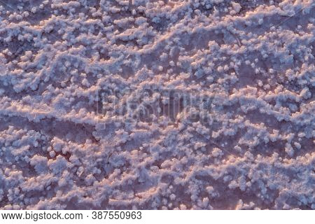 Crystals Of Pink Salt Natural Background. Genichesk Extremely Salty Lake (colored By Microalgae With