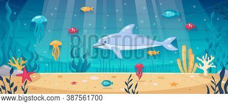 Diving Snorkeling Underwater World Cartoon Background With Dolphin Starfishes Ocean Floor Seaweeds C