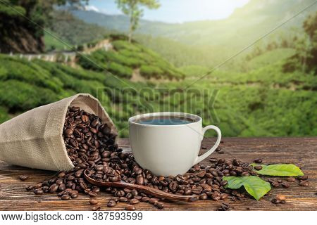 A Cup Of Fresh Coffee And Roasted Beans In A Bag On The Table Against The Backdrop Of A Landscape Of