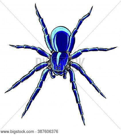 Spider Steed Crossbow Scary Vector Illustration Art