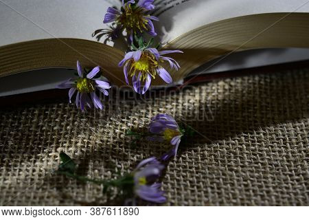 Fragment Of A Book With Fading Blue Flowers On A Burlap Background. The Concept Of The Completion Of