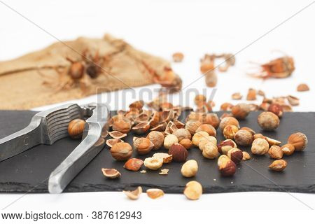 Hazelnuts With Nut Cracker On Black Stone Tablet. Organic Hazelnuts With Broken Hazel Shells. Health