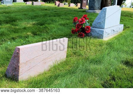 September 28, 2020 In Arvada, Co:  Rose Flowers Besides A Vintage Headstone Surrounded By Other Hist