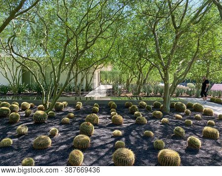 Sunnylands Center And Garden In Rancho Mirage, Desert Environment Park, Home To A Variety Of Plants