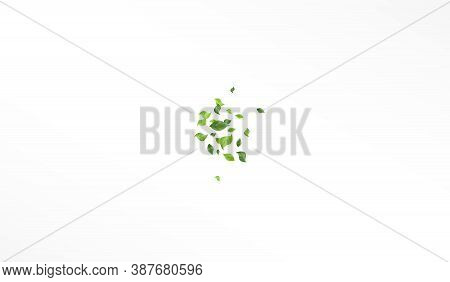 Mint Leaves Blur Vector White Background Backdrop. Spring Leaf Border. Green Foliage Organic Branch.
