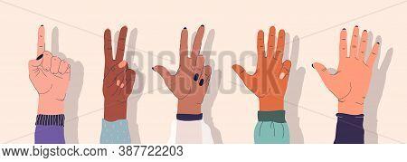 Set Of Female Hands Of Different Nationalities. Gentle Hands Showing Various Gestures. Stock Vector