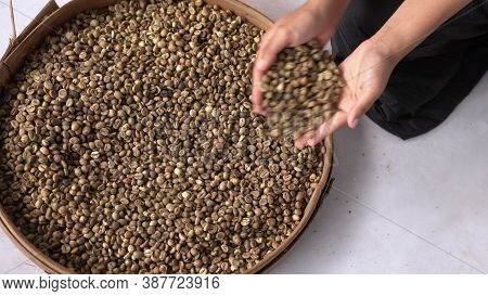 Black Coffee Beans In A Basket And A Woman's Hand