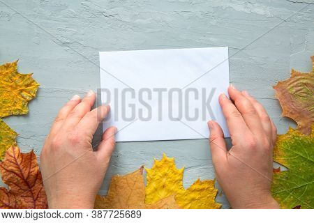 Female Hands Hold Blank Card For Invitation And Greeting Text. Autumn Background, Top View. Thanksgi