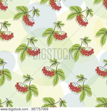 Viburnum Pattern. Red Viburnum. Autumn Time. Vector Background, Concept Fall Template