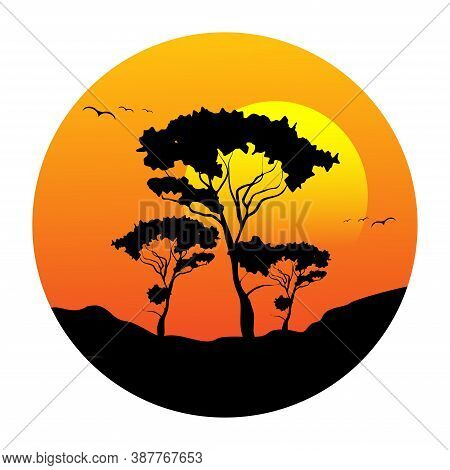 Silhouette Of Acacia Under Sunset. Silhouette Of Acacia Under Sunset.