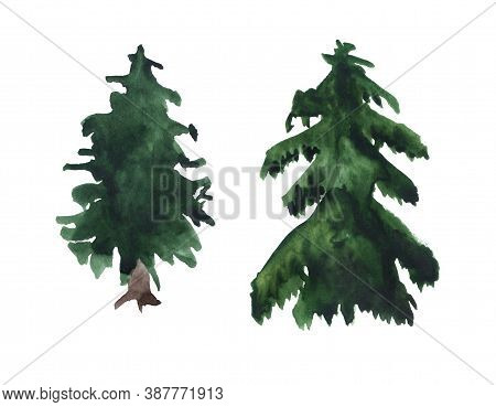 Two Watercolor Fir Trees. Hand Drawn Sketch Isolated On White Background.