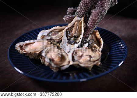 Blue Plate With Open Fresh Oysters. A Gloved Hand Puts An Oyster On A Plate. Unrecognizable Photo.