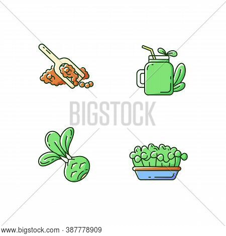 Greens Variety Rgb Color Icons Set. Fruity Smoothie Types. Microgreens Garden Ideas. Quinoa Seeds. N