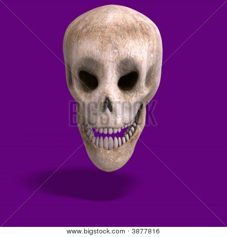 Toon Skull  Is Watching You