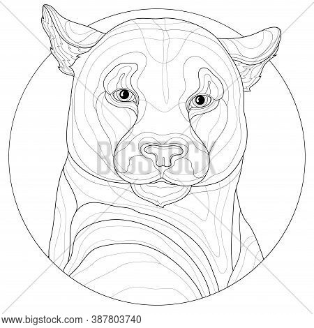 Puma.animal.coloring Book Antistress For Children And Adults. Zen-tangle Style.black And White Drawi