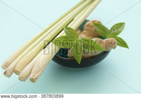 Herbs and spices in a bowl: lemongrass stems, ginger roots, and basil leaves