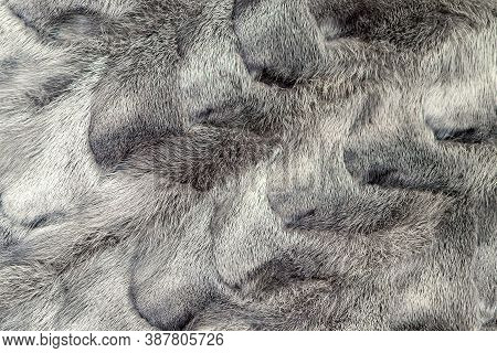 Grey Mink Fur Pattern. Concept Of Production And Sale Of Fur Coats, Clothing And Products Made Of Ex