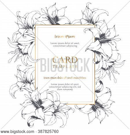 Vector Floral Elegant Card With Hand Drawn Grey Lilies And Leaves Isolated On White Background. Bota