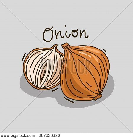 Vector Illustration With A Vegetable. Onion And Half Onion. Isolated Background.