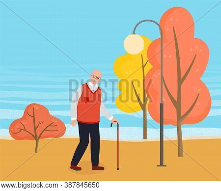 Old Man Flat Vector Illustration. An Elderly Man With Glasses And Walking Cane In Autumn City Park.