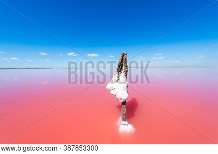 Pink Lake. Salt Pink Formation In The Lake. Water Of This Lake Is Heavily Saturated With Salt And Ha