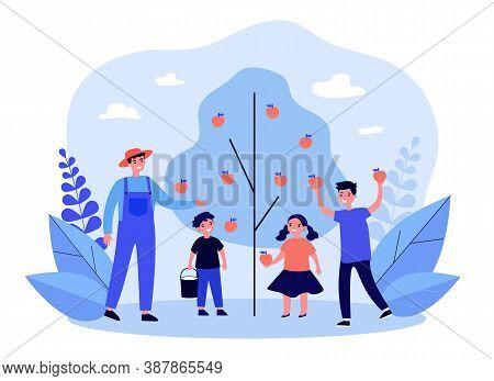 Man And Kids Picking Apples In Garden. Dad, Children, Tree, Orchard Flat Vector Illustration. Autumn