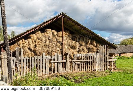Hay Storage With Harvested Bales Of Hay For Cattle. Agricultural Barn Canopy With Bales Hay In Summe