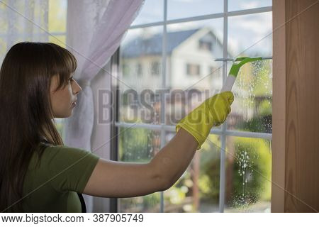 Close Up View Of Woman In Rubber Gloves Cleaning Apartment, Wipes Window Using Spray Detergent, Rubs