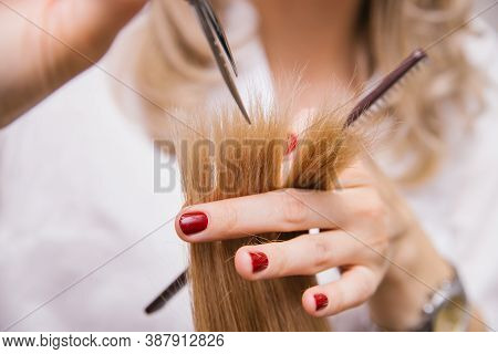 A Young Woman Cuts Her Hair With Scissors. The Girl Combs Her Hair. Professional Hair Care Products.