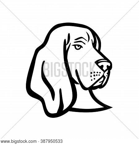 Mascot Black And White Illustration Of Head Of A Basset Hound Or Scent Hound, A Short-legged Dog Bre
