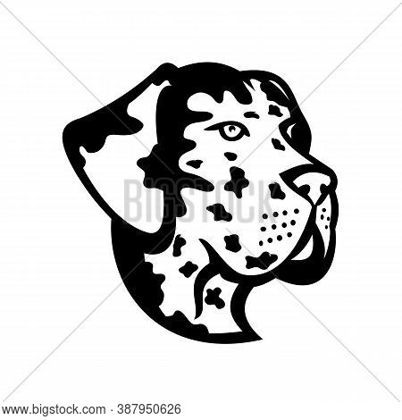 Mascot Black And White Illustration Of Head Of A Great Dane, Deutsche Dogge, German Mastiff Or Dogue
