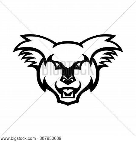 Mascot Illustration Of Head Of An Angry Koala Bear, An Arboreal Herbivorous Marsupial Native To Aust