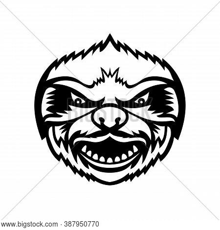 Mascot Black And White Illustration Of Head Of An Angry Sloth, An Arboreal Mammal In The Tropical Ra