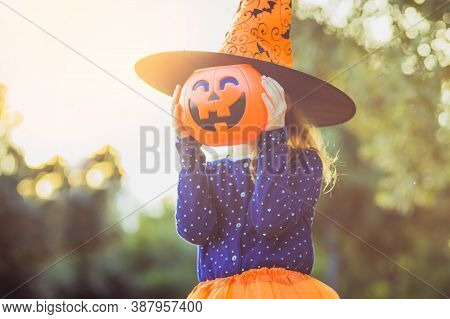 Halloween Kids. Little Girl With Jack-o-lantern In Witch Hat With Pumpkin Candy Bucket. Toddler Kid