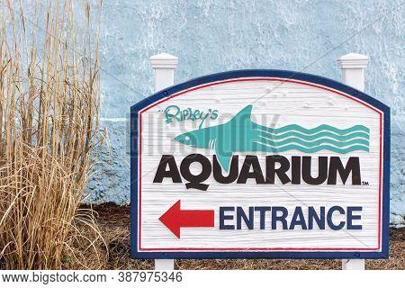 Myrtle Beach, South Carolina, Usa - February 9, 2015. The Ripleys Aquarium Is One Of The Most Popula