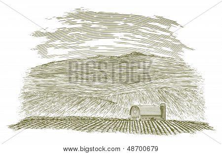 Woodcut Farm Barn And Field