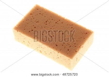 Sponge On A White Background