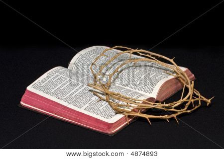 Bible And Thorns