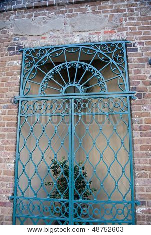 Iron gate with plant