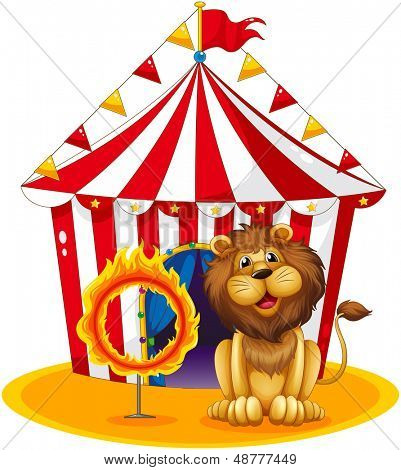 Illustration of a lion beside a fire hoop at the circus on a white background