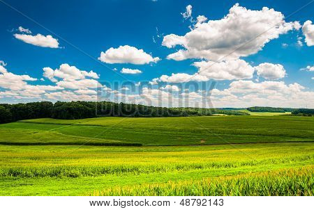 Beautiful Summer Clouds Over Fields And Rolling Hills In Southern York County, Pennsylvania.