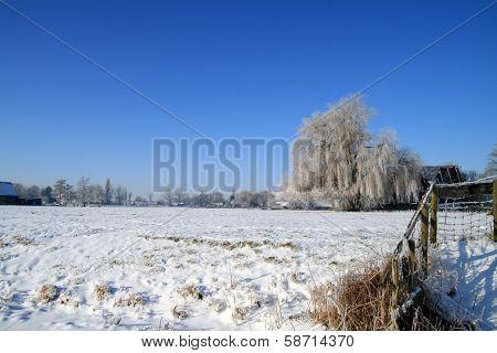 Dutch winterlandscape.