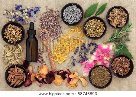 Herbal naturopathic medicine selection also used in pagan witches magical potions over old paper background.