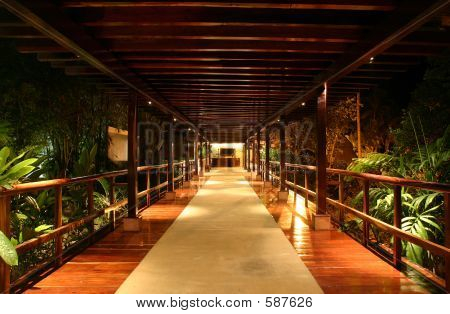 Tropical Bridge At Night