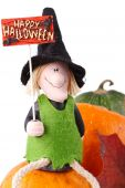 Figurine of a witch and tiny pumpkin on a white background poster