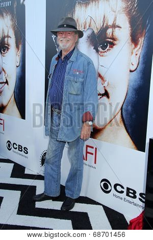 LOS ANGELES - JUL 16:  Russ Tamblyn at the 'Twin Peaks - The Entire Mystery' Blu-Ray/DVD Release Party And Screening at the Vista Theater on July 16, 2014 in Los Angeles, CA