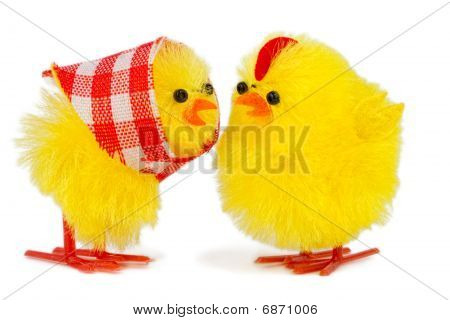 Mommy And Daddy Chick